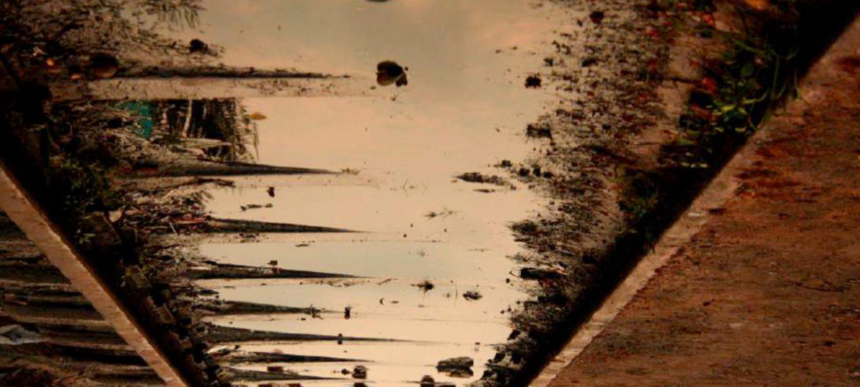 Esquisse – J'ai remonté le fleuve pour vous !